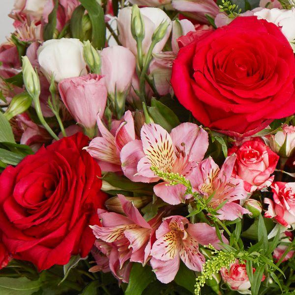 Flower Addict - Far East Fuchsia